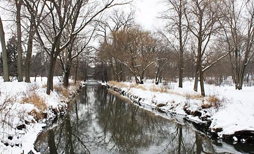 Morton Arboretum Lisle